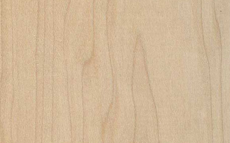 Select Grade Maple Door