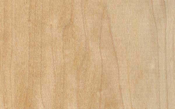 UV Cured Maple Plywood
